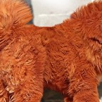Worlds Most Expensive Dog: Tibetan Mastiff Sells for 1.5 Million