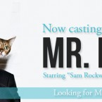 Mr. Right Now Casting Extras