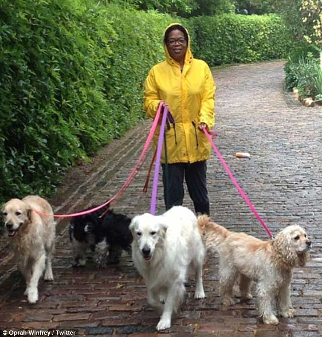 Oprah in The Promised Land Walking Her Dogs (2)