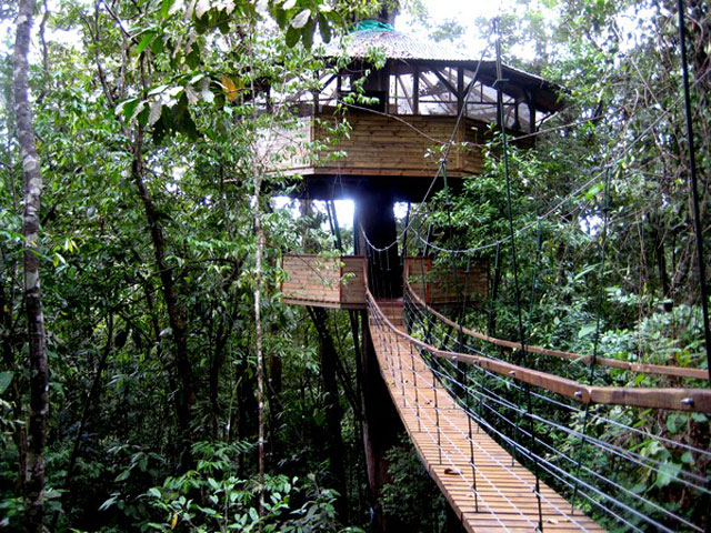 Climb into one of these epic tree houses around the world for Hotel luxury definicion