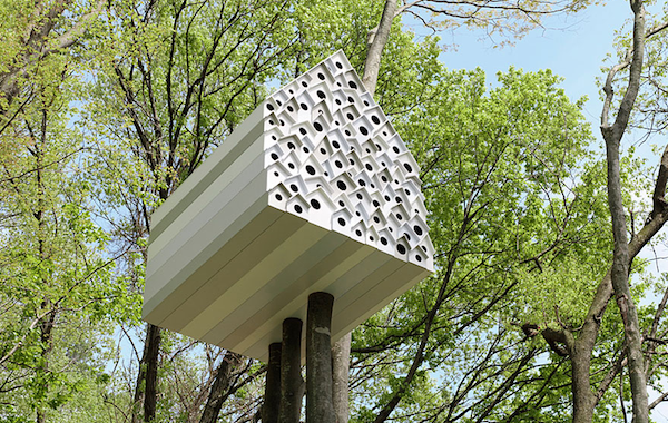 Tree House for Birds and People
