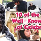 Ten of the Most Well-Known Pets of Celebrities